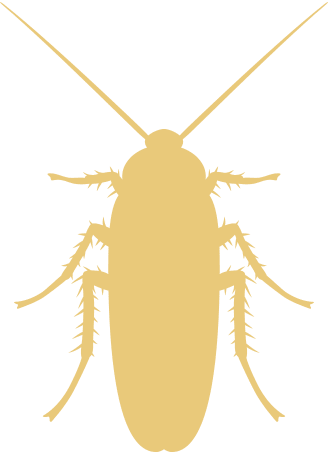 gold roach icon