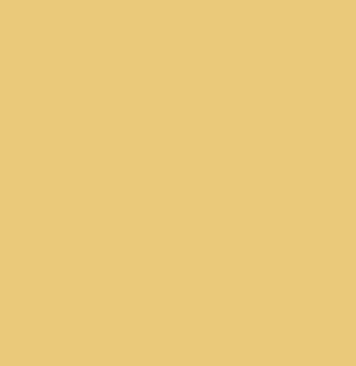 Flea and tick icon